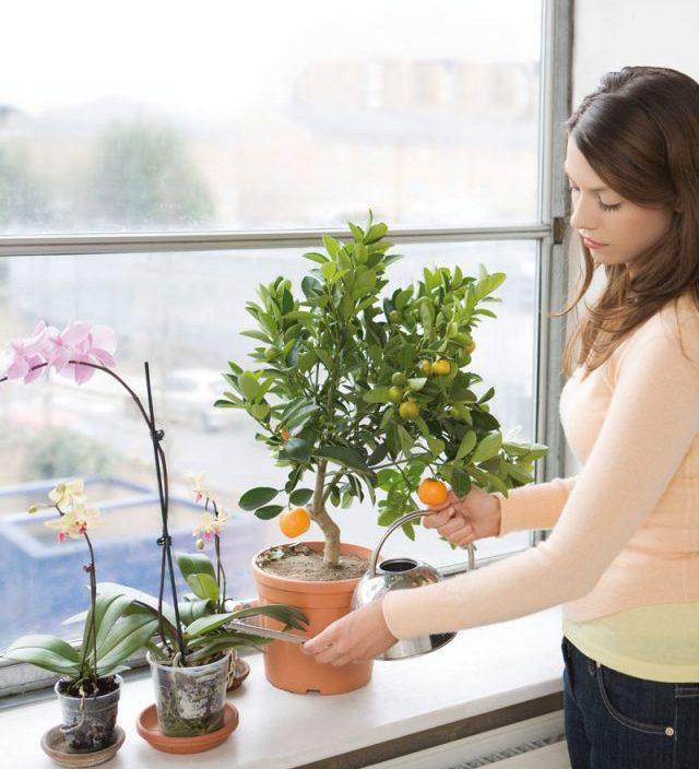 abbastanza Vasi da fiori, come riciclare vecchi oggetti - CentroPagina - Il  GL65