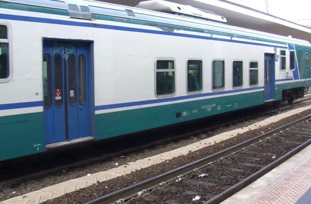 Senigallia, istrice ferito sui binari: fermati i treni per soccorrerlo