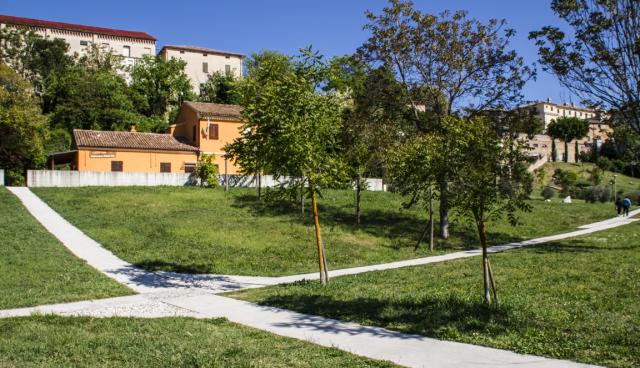 """Jesi, potature """"anti-reato"""" al parco del Vallato"""