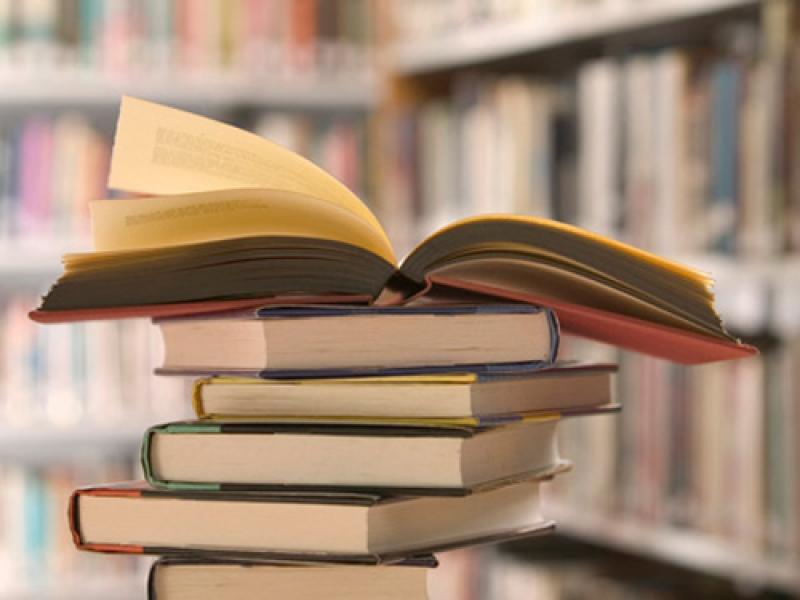 Letture estive, i consigli della libreria Fogola: «Tanto interesse per i libri sulle Marche»
