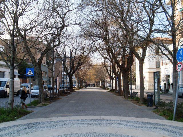 Ancona aderisce a Mosaico verde: in arrivo 500 nuovi alberi