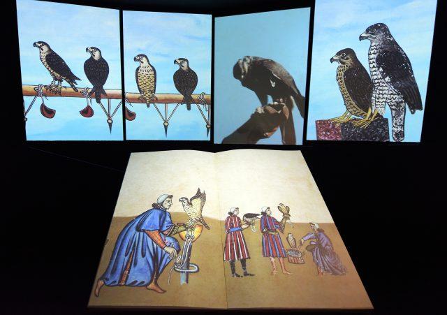 Jesi, Museo Stupor Mundi: c'è il bando