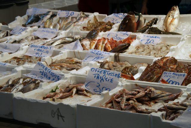 San Bendetto, maxi sequestro di pesce congelato: da Molfetta in camion senza freezer