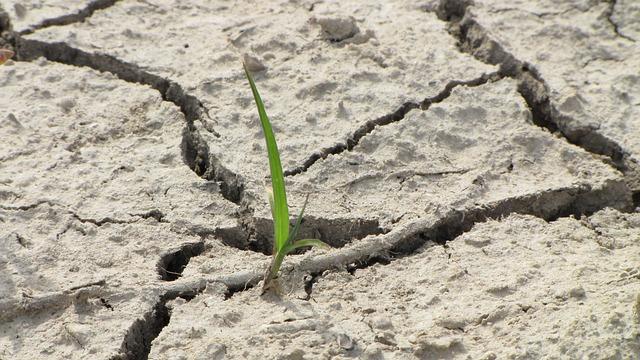 Meteo, Fazzini: «Dicembre umido e con brevi ondate di freddo». Preoccupa la mancanza di precipitazioni