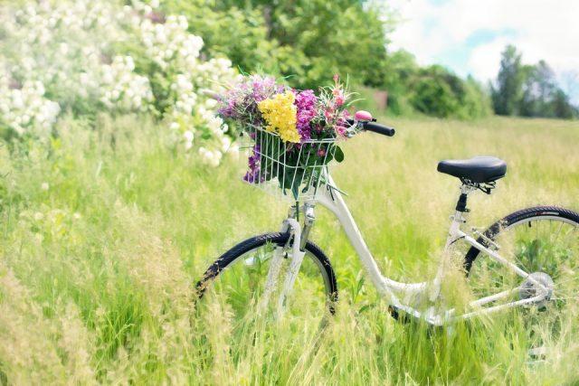 La bicicletta è un must, Stortoni: «C'è stata un'impennata di richieste inattesa»