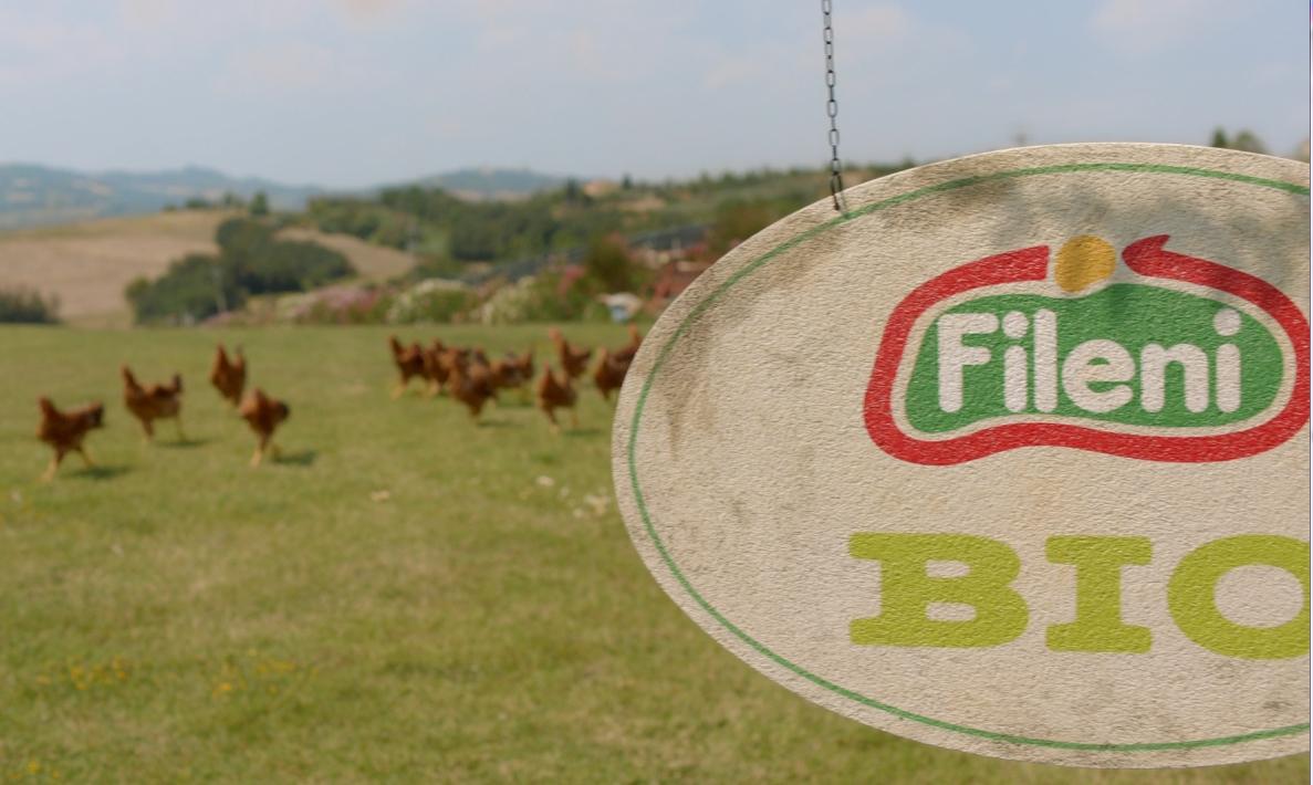 Fileni in prima linea per l'agricoltura. Il Gruppo entra in Cia, Coldiretti e Copagri