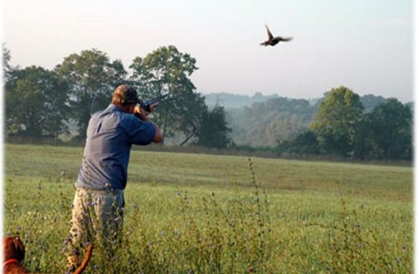 """Appostamento fisso di caccia vicino al """"Sanzio"""": il privato ritira la domanda"""
