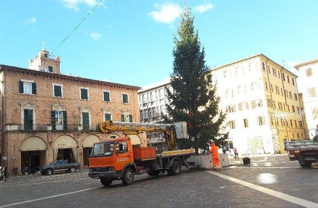 Jesi, per Natale in piazza torna l'albero