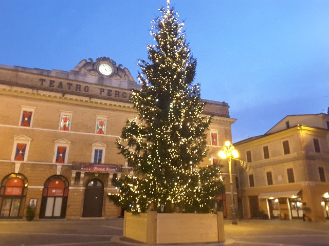 Jesi, l'albero di Natale in piazza ci sarà nonostante il Covid