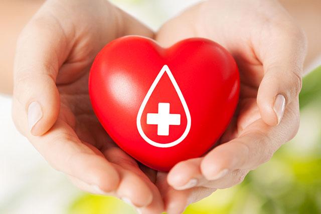 Il ruolo centrale delle donne nella donazione di sangue: incontro Avis ad Ascoli