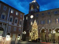 L'albero di natale in piazza Roma a Senigallia