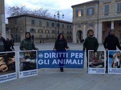 """Il flashmob di """"Essere Animali"""" a Senigallia"""