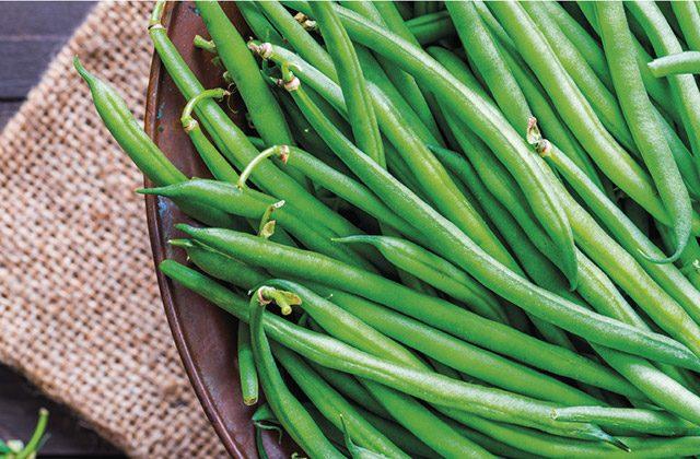 prodotti ortofrutticoli, fagiolini, agricoltura bio