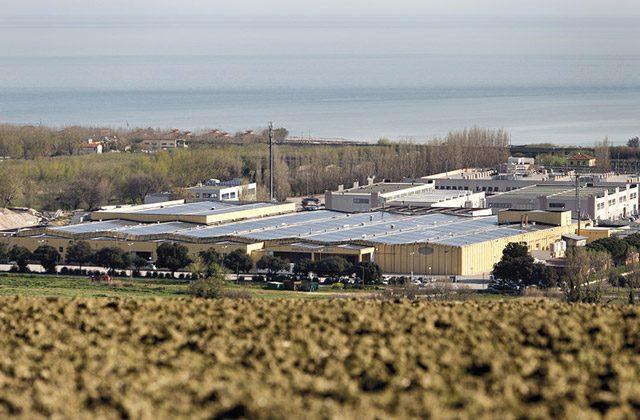 L'azienda Orto Verde con sede al Cesano di Senigallia e nell'ascolano