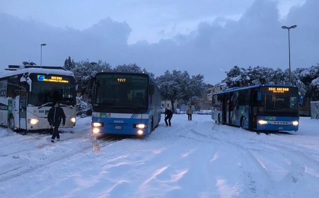 Autobus Autolinee Crognaletti