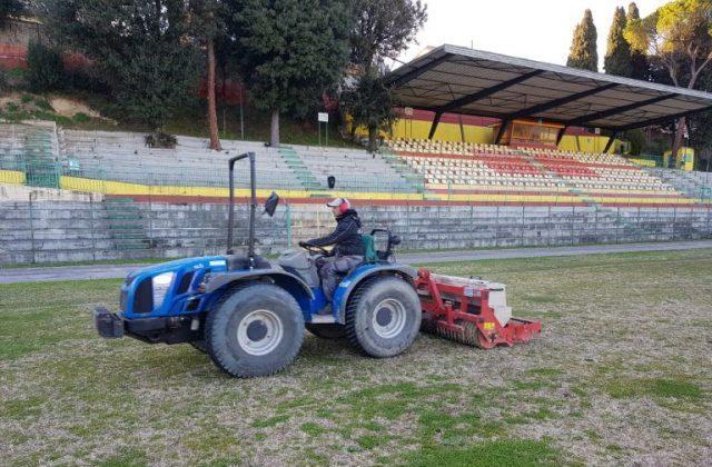 Il manto erboso dello stadio Diana di Osimo