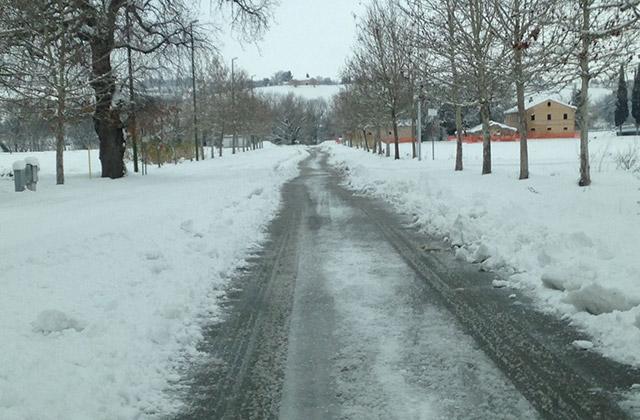 Neve a Corinaldo