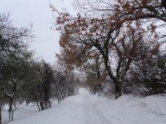 La nevicata del 2012 a Jesi, lungo via Montesecco