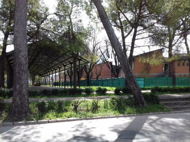 La tettoia del Campo Boario