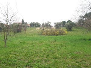 """L'area di via Schweitzer dove sorgerà la nuova """"Lorenzini"""""""