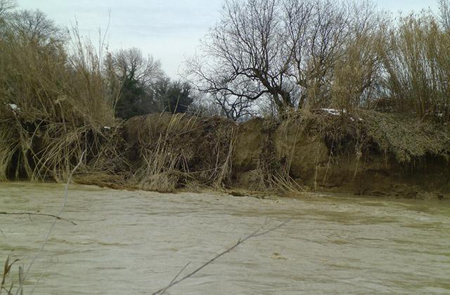 L'argine del fiume Misa in località Molino Marazzana