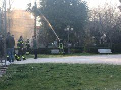 I Vigili del Fuoco ai giardini per spegnere l'incendio che aveva attecchito sulla palma