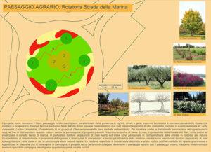 """Progetto """"5 paesaggi per 5 rotatorie"""": la rotatoria di strada della Marina (paesaggio agrario)"""