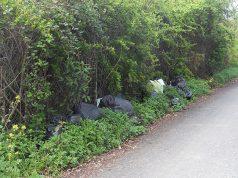 rifiuti abbandonati a Senigallia, lungo strada del Morignano