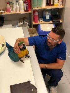 Franky con il veterinario