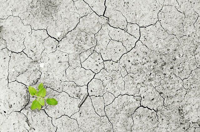 cambiamenti climatici: siccità