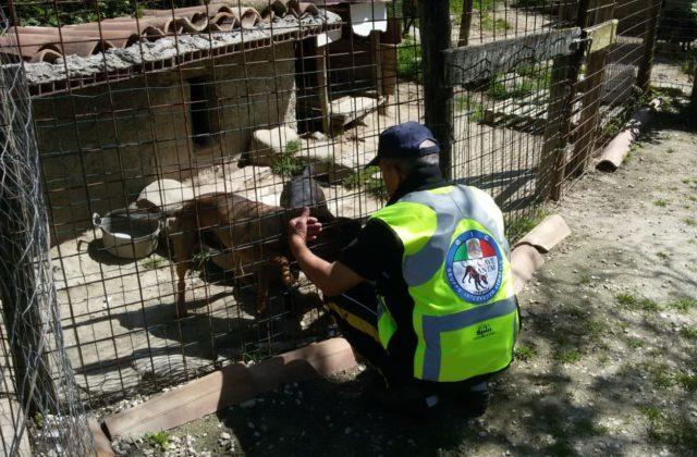 I volontari all'opera nelle zone colpite dal sisma