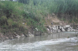 Uno dei precedenti interventi sul fiume Misa: l'arginatura artificiale di somma urgenza è abbandonata e ormai inutile