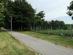 La pista ciclabile, l'area sguinzagliata per i cani e il parco alla Cesanella di Senigallia