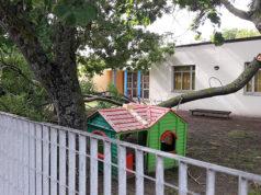 Il ramo crollato vicino ai giochi per bambini della scuola dell'infanzia a Ponte Rio di Trecastelli