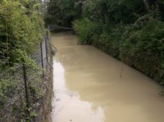 canale sant'Elena