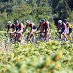 ciclismo, ciclisti, bicicletta