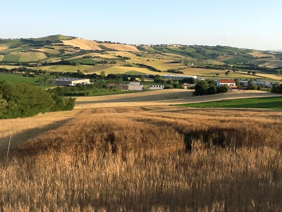 Politecnica, eccellenze per Agraria e Ingegneria