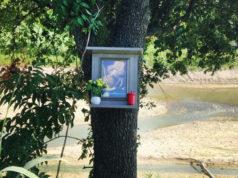 L'effigie di San Giovanni Nepomuceno su un albero del fiume Misa a Senigallia