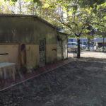 Il canile sanitario a Borgo Bicchia di Senigallia