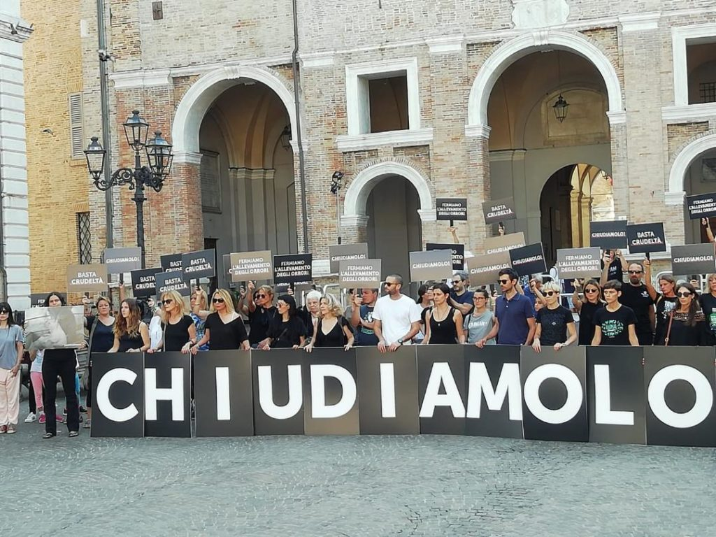 La manifestazione in piazza Roma