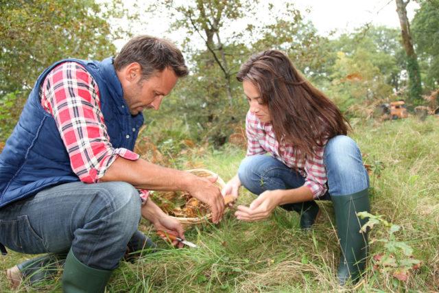 In cerca di funghi: tornano gli appuntamenti del Gruppo Micologico di Fabriano