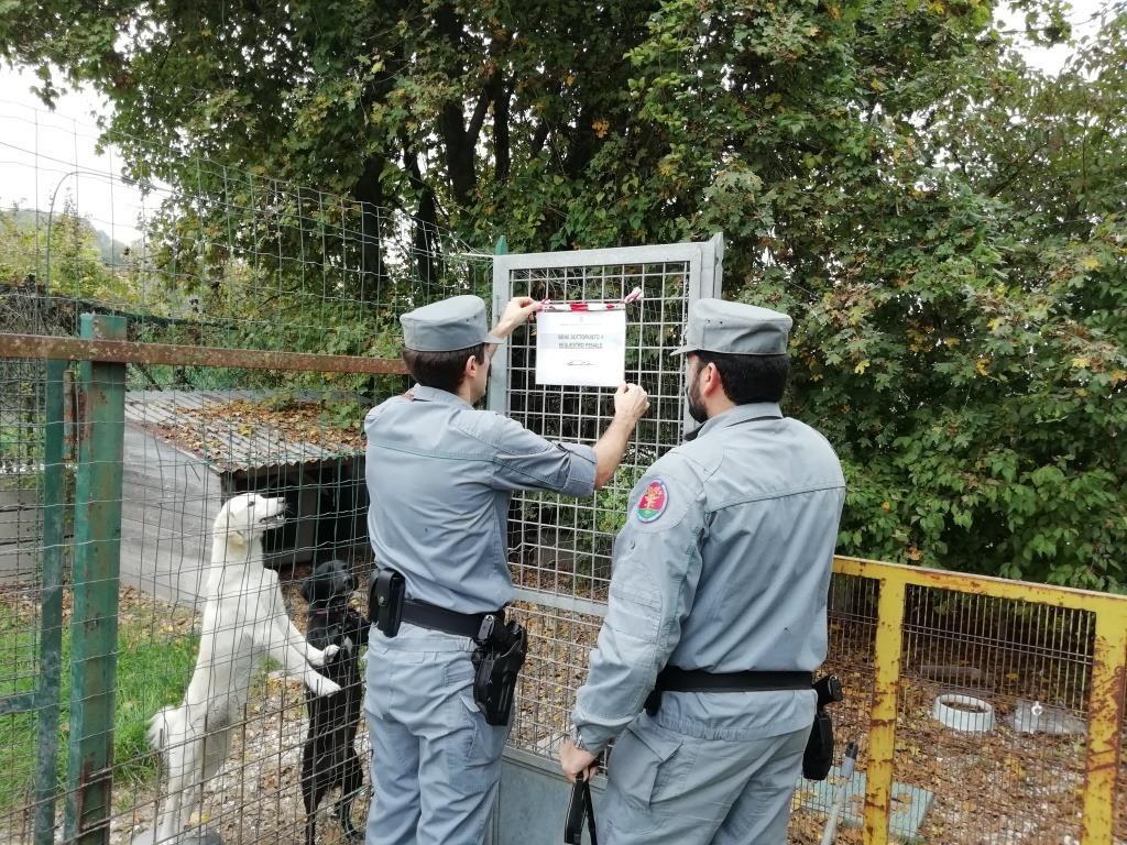I carabinieri forestali mettono sotto sequestro l'area privata nel comune di Sassoferrato