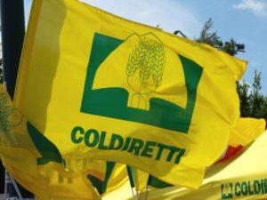 La Coldiretti promuove le nuove iniziative imprenditoriali legate all'agricoltura