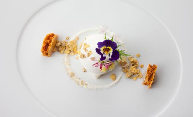 """Proposta culinaria """"Lab 2016"""": Gelato di formaggio con miele al pino e polline"""