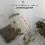 Lo stupefacente sequestrato dai Carabinieri grazie ai controlli antidroga