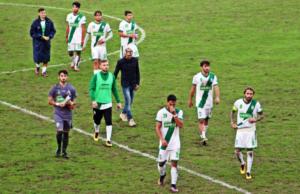 Il Castelfidardo calcio