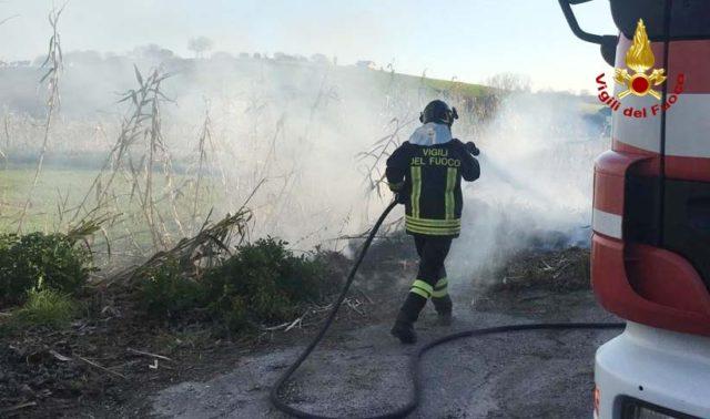 Maiolati Spontini, a fuoco sterpaglie