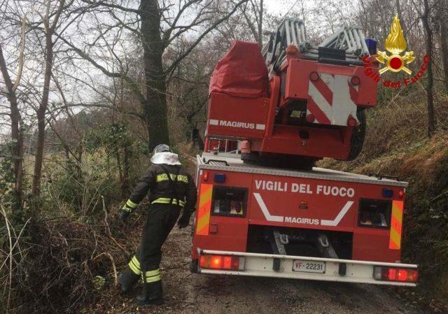 Civitanova, vasto incendio in un canneto: vigili del fuoco in azione