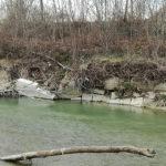 Servono interventi per la messa in sicurezza del fiume Misa alle Bettolelle e alla Marazzana di Senigallia