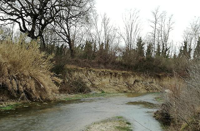 Erosione della sponda sinistra del fiume Misa nella zona Molino Marazzana di Senigallia